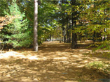 campground2