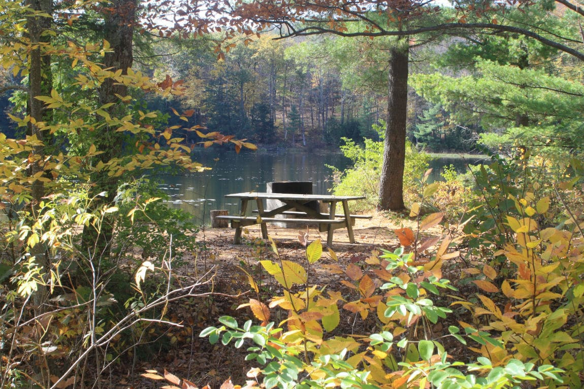 Indian pond campground campmaine for Public fishing areas near me