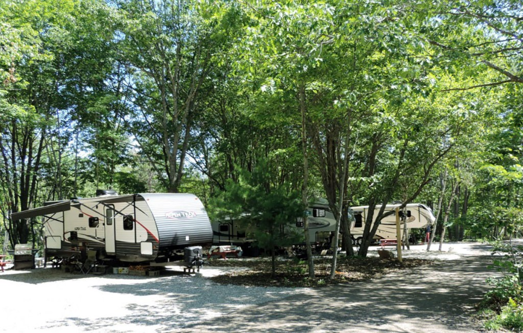 Sandy-Pines-Campground-RV-sites